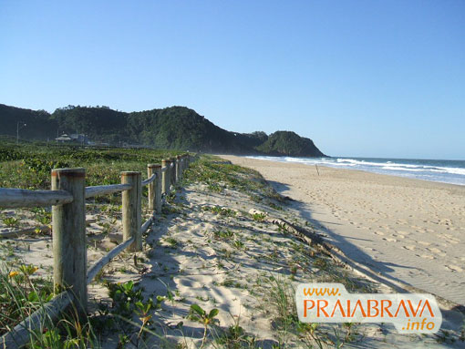 A super defendida restinga da Praia Brava Itajaí - Imagem: Ronaud Pereira