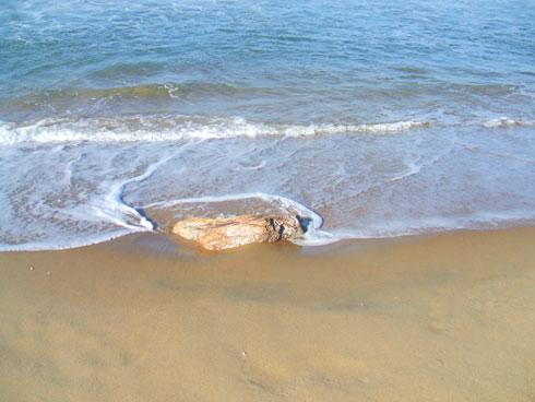 Ressaca na Praia Brava Itajaí - Pedra sendo coberta pela areia