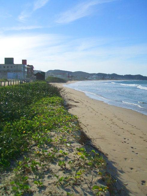 Ressaca na Praia Brava Itajaí - Aos céticos, acreditem, sem a vegetação, seria pior